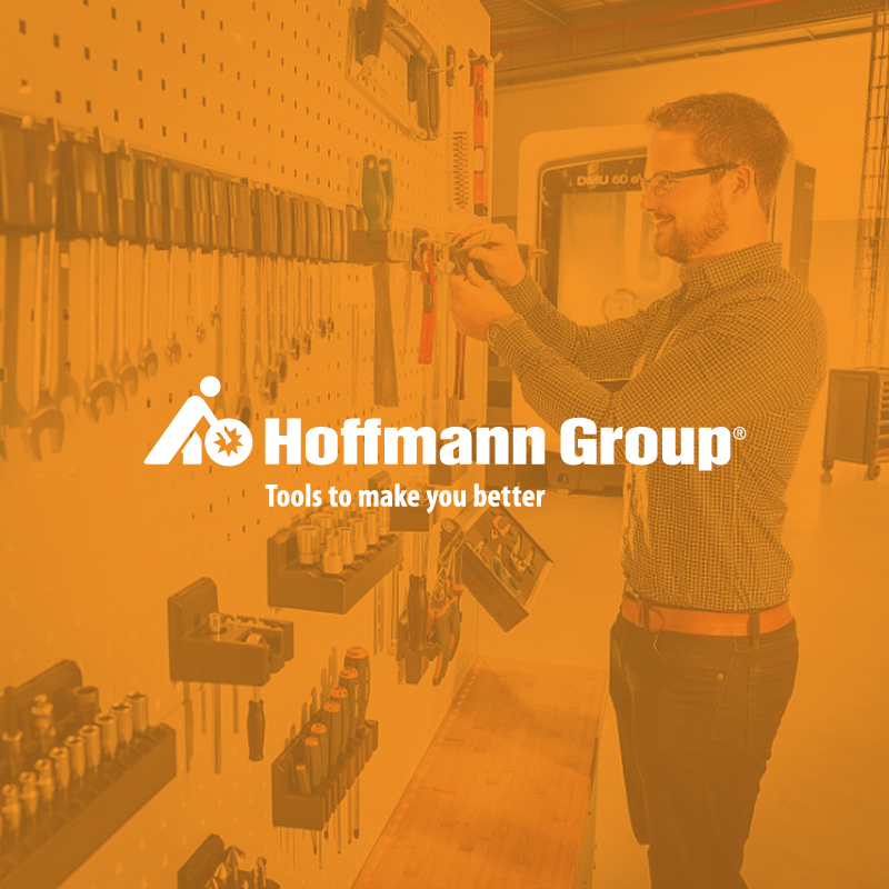 Hoffmann GmbH Qualitätswerkzeuge - Implementation of an ISCM analysis and recommendation for action with subsequent project initialisation and project support