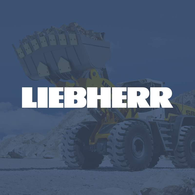 Liebherr-International Deutschland GmbH - Introduction of an ISCM solution in all divisions of the company