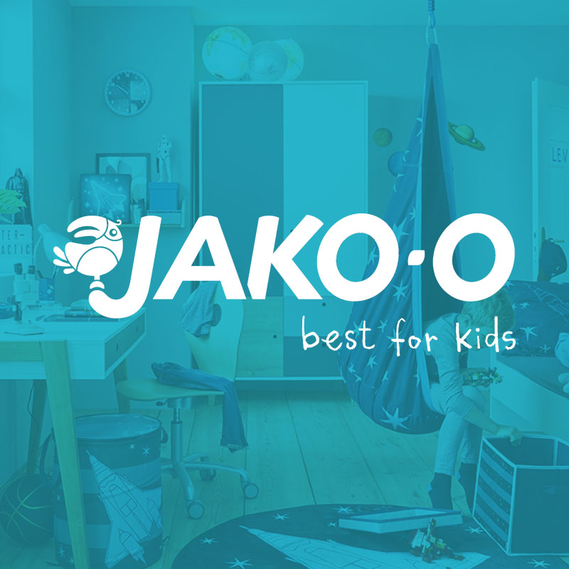 jako-o - ISCM analysis and recommendation for action, project and strategy advice