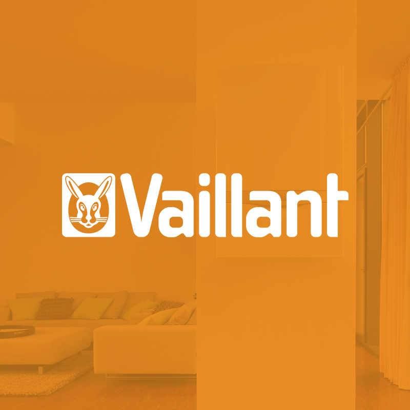 vaillant - Implementation of a data model analysis and PIM system anamnesis.